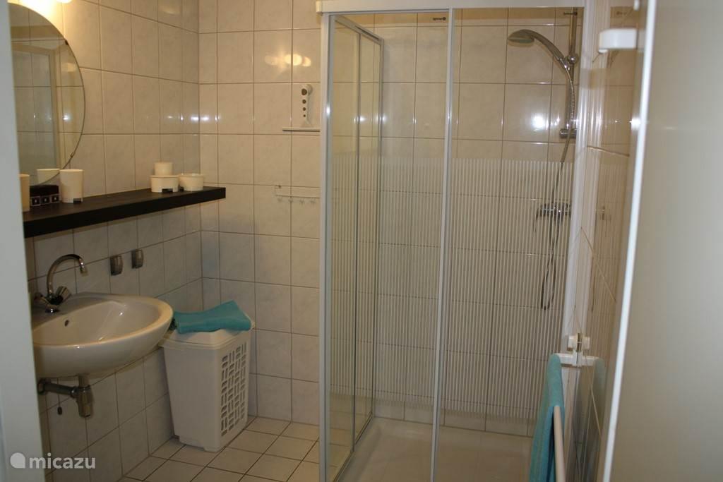 Badkamer met douche.