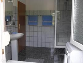 Badkamer met douchecabine, toilet en wasmachine.