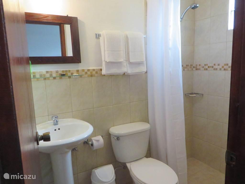 Aruba Studio B - Badkamer met douche, wastafel en toilet