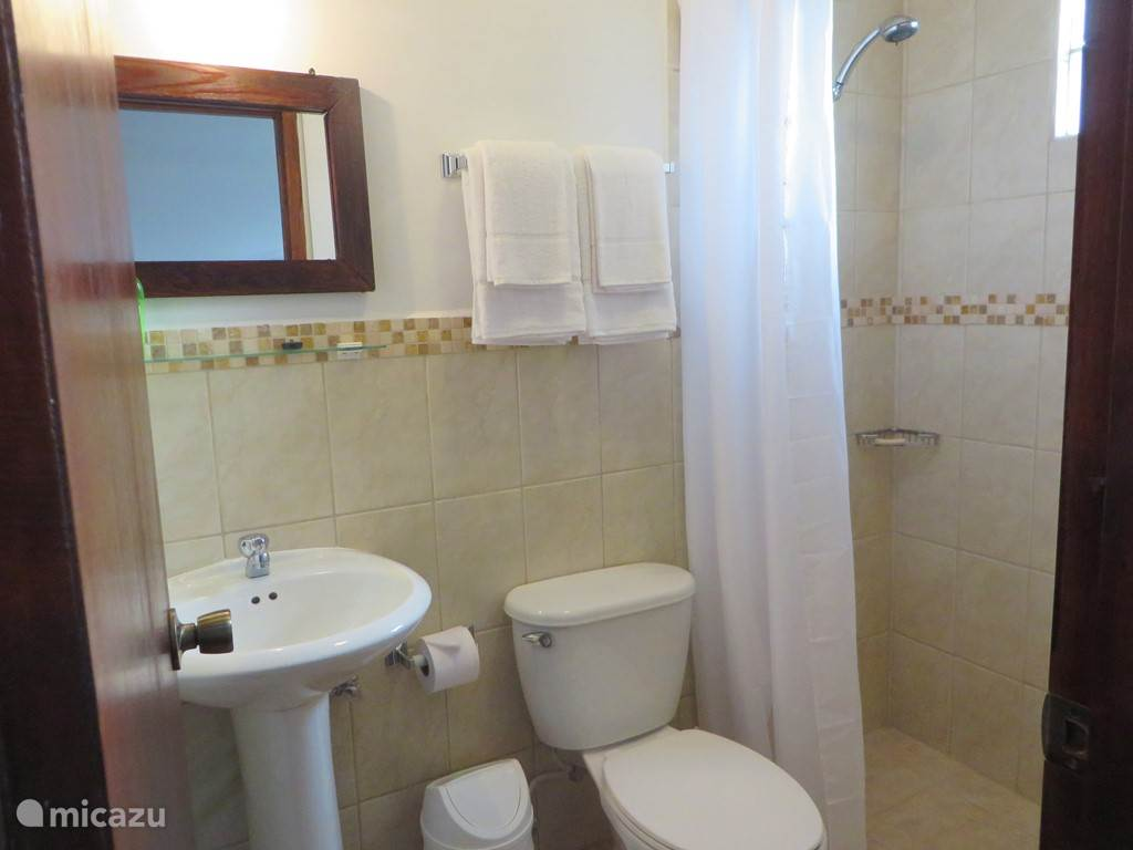 Aruba Studio B - Bathroom with shower, sink and toilet