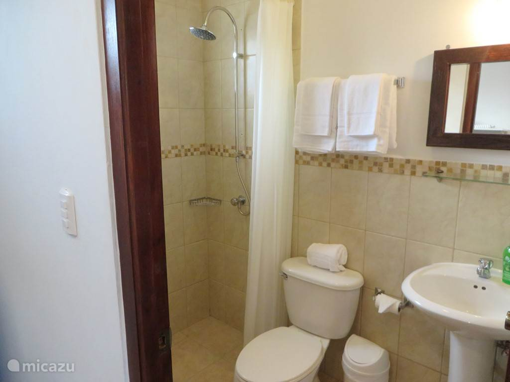 Aruba Studio A - Bathroom with shower, sink and toilet