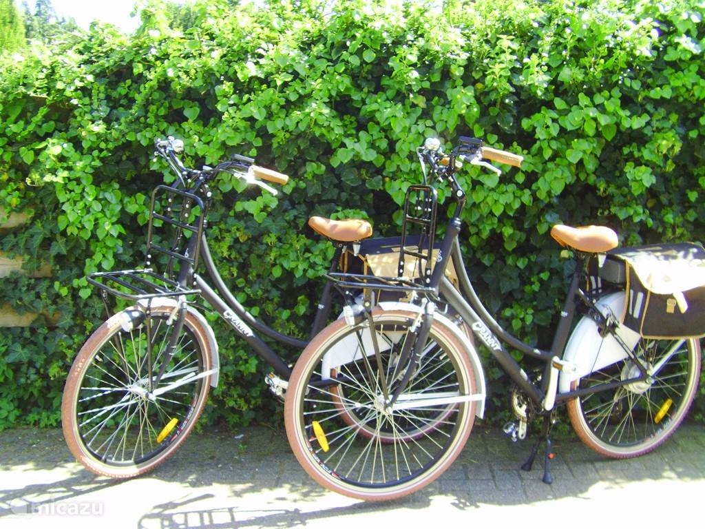 nu ook elektrische fietsen voor de verhuur.