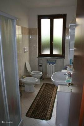 The bathroom with shower and Wc / Bidet