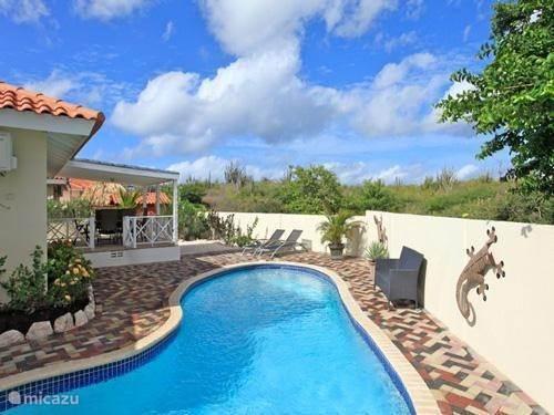The garden & pool