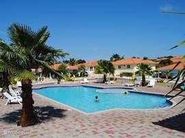 Gezamenlijk zwembad op het resort