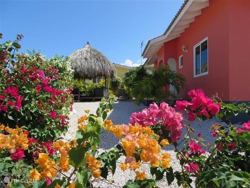 Vakantiehuis Curacao, Banda Abou (west), Fontein villa Kas Orane