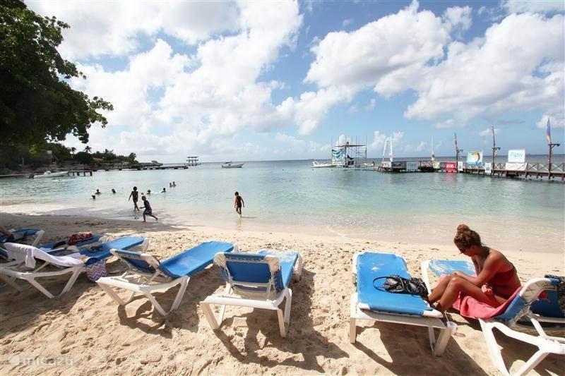 Pirate Bay Beach