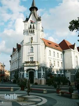 Town of Kaposvár