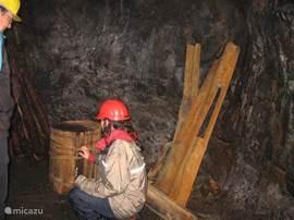 De Zilvermijn van Nykroppa aan de Hornkullsvägen aan de weg van Villa Swe-rent Hornkullen