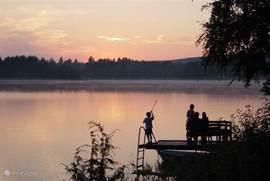 Ook vissen is mogelijk in het meer bij Nykroppa maar ook is het meer aan het nabij gelegen Gammalkroppa waar u Zalm/forel kunt vangen. Een vis vergunning kunt u hiervoor kopen bij de supermarkt op 10 minuten lopen van het huis