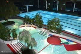 Het mooie tropische zwembad in Kristinehamn