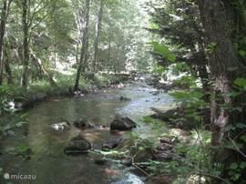 rivier (Besbre) direct vanuit tuin