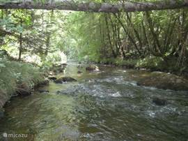 river: this photo was taken from garden