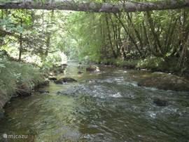 rivier: ook deze foto is vanuit tuin genomen