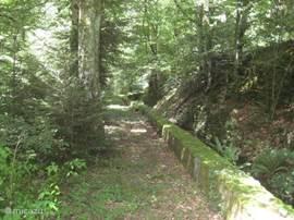 tuin: pad langs bovenloop van bief naar voorperceel