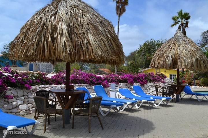 Strandbedden en palapa's Seru Coral Resort