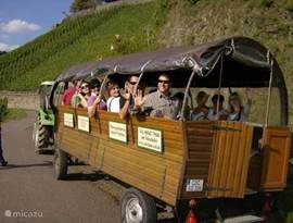 We can offer a trip along the Mosel and through the mountains, depending the number of persons. GREAT!