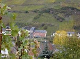 Zicht op Zell am Mosel.  Zie de druivenranken op de steile hellingen.Onvergetelijke vergezichten.
