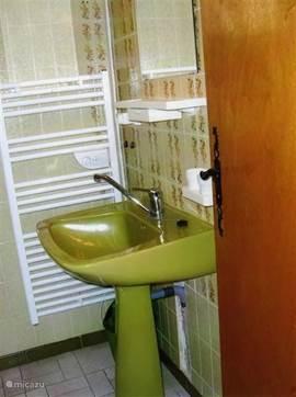 wastafel in badkamer met douche in oude gedeelte huis.
