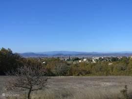 Uitzicht op de wijnvelden in maart
