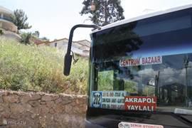 buslijn 202 vertrekt elke 15 minuten naar het centrum en weer terug.De halte is slechts  50 meter van Villa Kestel