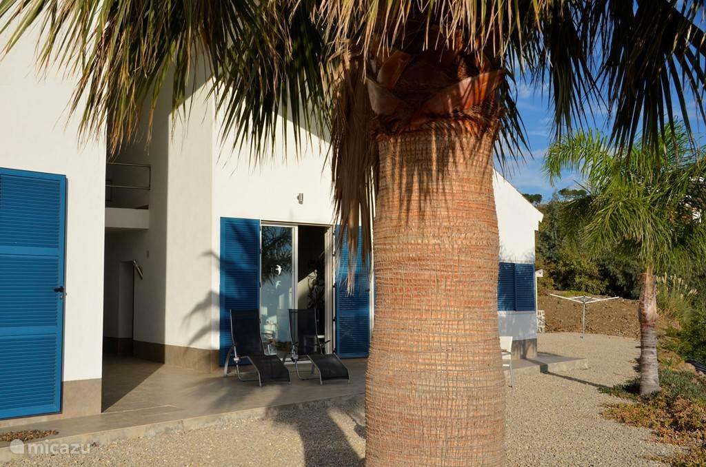 Palmbomen voor de woning.