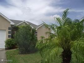 Bloeiende planten en palmen in de voortuin