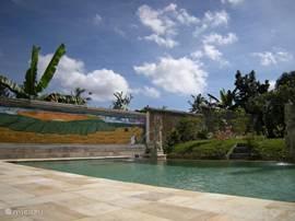 het zwembad van 5x10 m