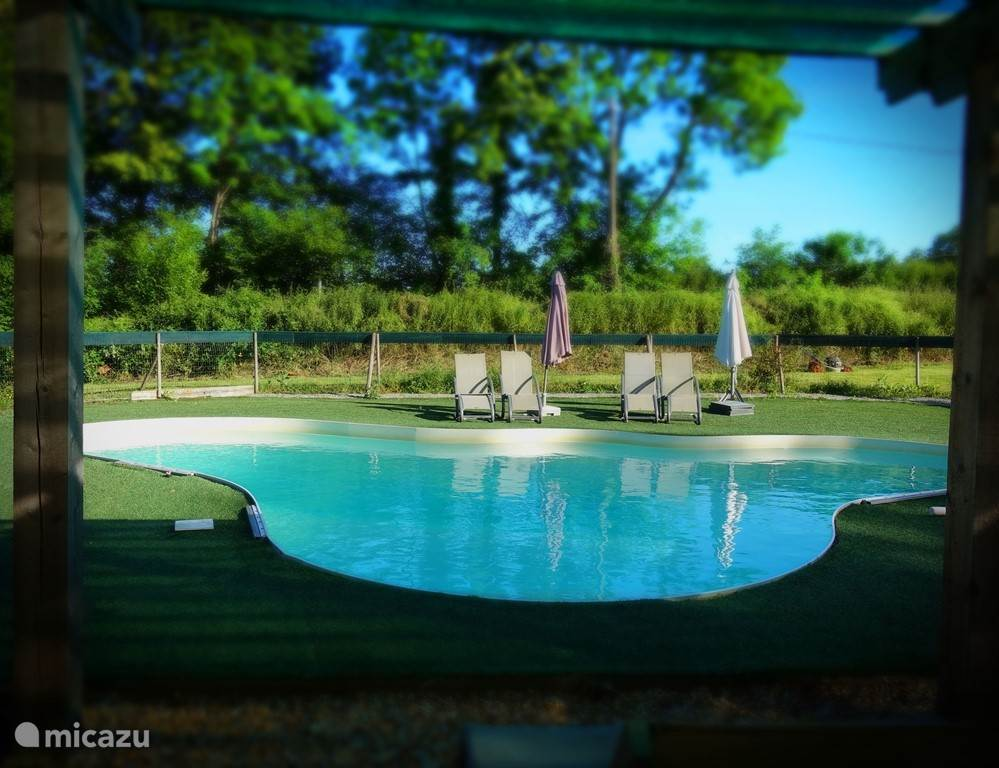 The outdoor swimming pool with adjoining covered areas