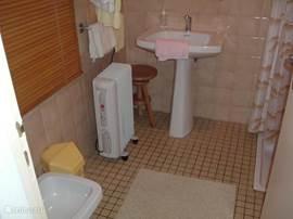 Flinke badkamer met douchehoek en bidet. Een gewone ruim water gevende douche.