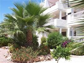 Luxe, rustig gelegen appartement voor 1-6* (5e of 6e pers. in overleg) met 2 slaapk., 2 badk., balkon, lift, airconditioning, alle apparatuur, marmeren vloeren. Het appartement heeft een grote, mooi aangelegde, ommuurde tuin en een goed onderhouden gemeensch. zwembad met kinderbad. GRATIS INTERNET