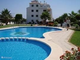Mooi zwembad met apart kinderbad in een mooie,grote tuin. Het zwembad wordt enkele malen per week onderhouden.