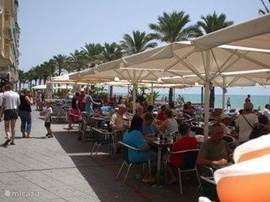 De boulevard van Torrevieja met veel gezellige terrasjes en restaurants. Door de perfecte ligging, een gemiddelde temperatuur van 20° C, en de meer dan 300 zonuren, het hele jaar door druk bezocht. Leuk om af te wandelen is de oostelijke dijk (Dique de Levante) geopend in 2000.