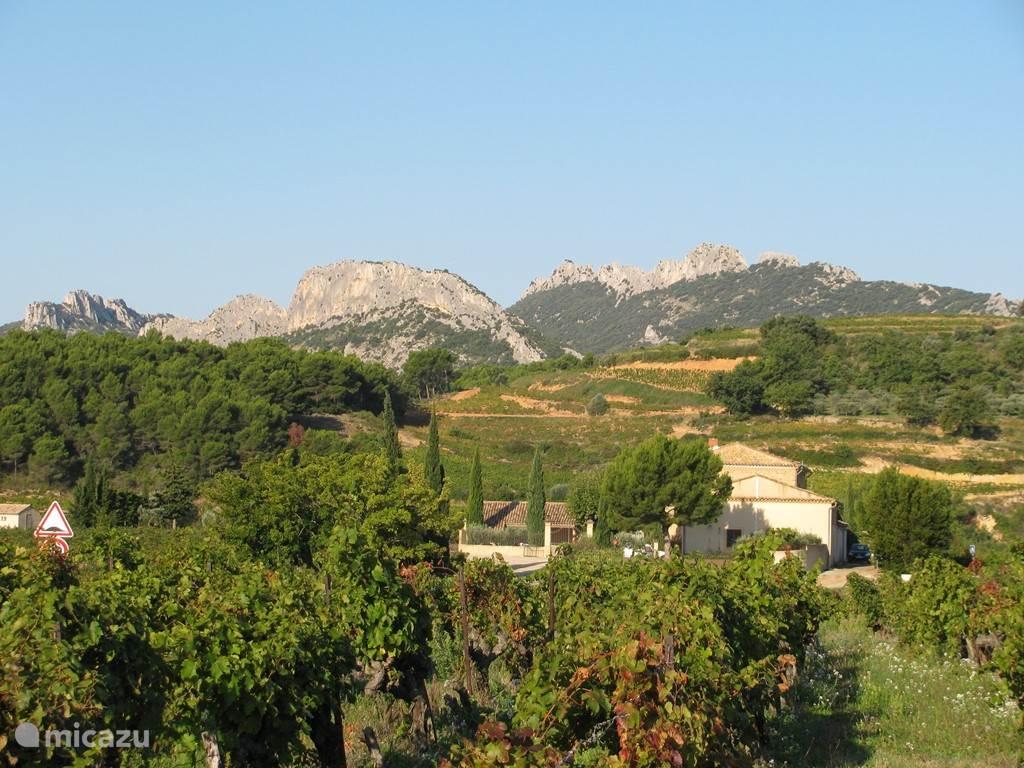 directe omgeving met zicht op de Dentelles de Montmirail