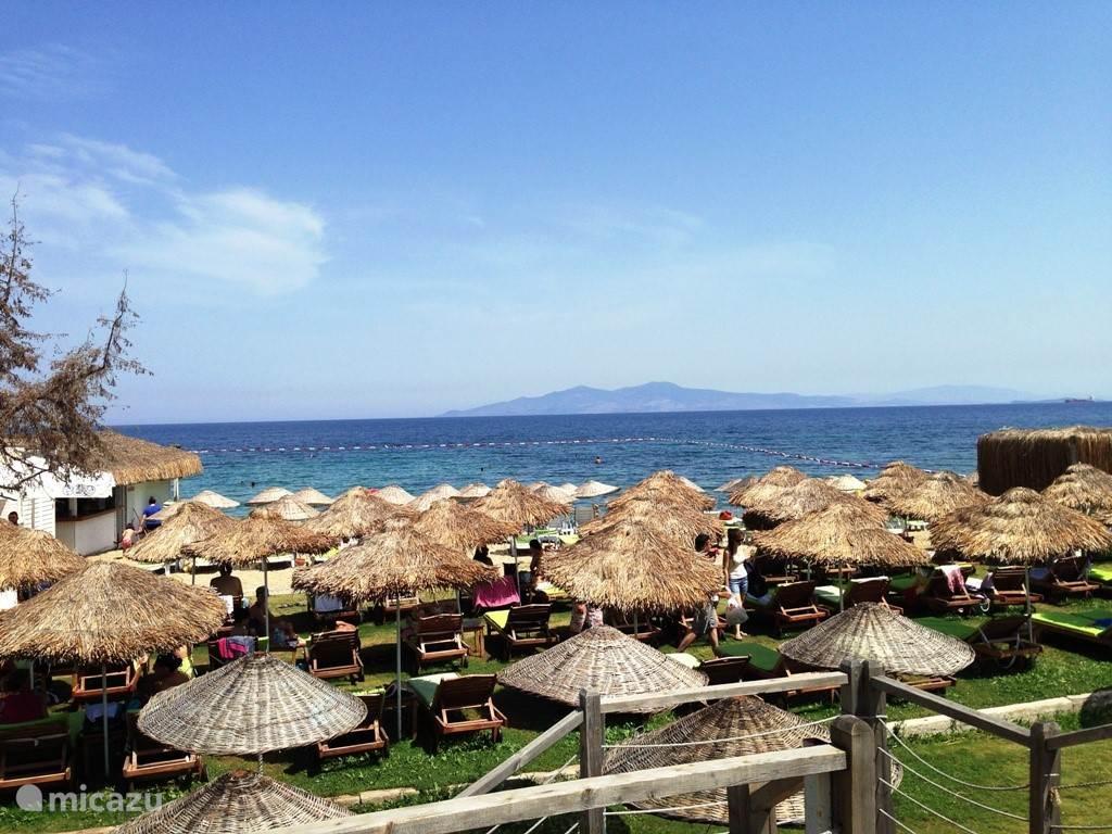 Mambo beachclub.