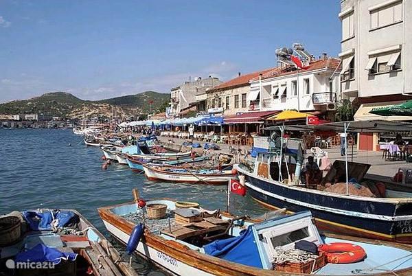 Eski Foca (het oude Foca). Prachtige havenstad met heel veel goede restaurants.  De rit langs de baaien van Yeni Foca naar Eski Foca is werkelijk schitterend.