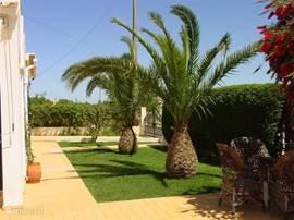 Mooi aangelegde tuin op het oosten, terras & zwembad op het zuiden en nog een terras op het westen.