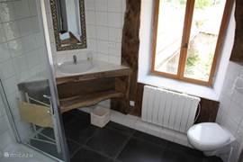 Badkamer (wastafel, toilket en douchecabine) met uitzicht op de cour.