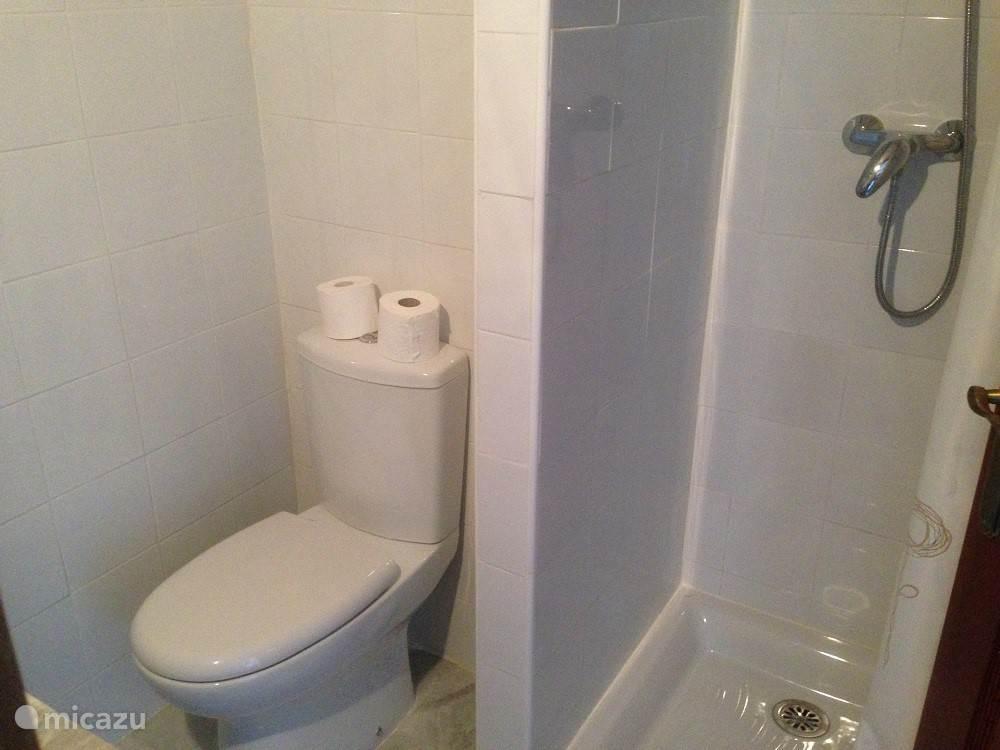 Badkamer 2 met inloopdouche, toilet en wastafel