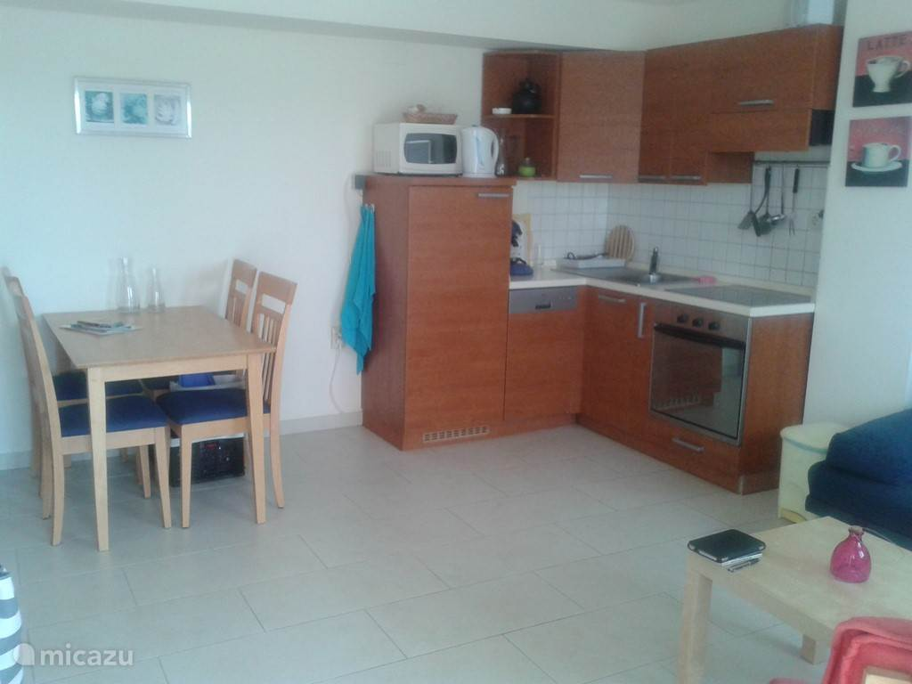 Open kitchen with grill / oven, electric hob, microwave, large fridge, dishwasher and koffiesetapparaat. The bank is if necessary pull out into a double bed.