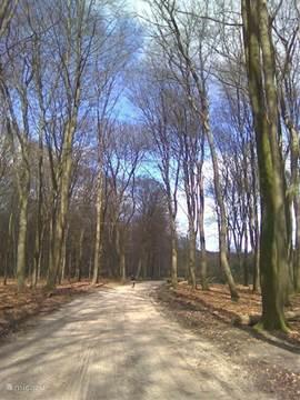 Een schitterend gebied om in te fietsen en te wandelen; er zijn prachtige fiets- en wandelroutes