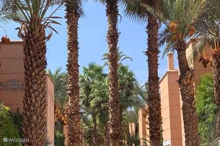 Vakantiehuis Marokko – vakantiehuis Ryad Saloua