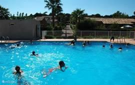 lekker afkoelen in het zwembad van Green Village