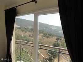 Uitizicht vanuit westkant woonkamer (met Frans balkon).