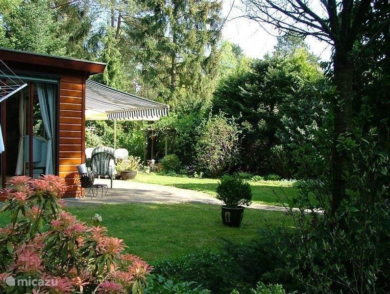 De Tuin en de directe omgeving