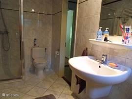 Badkamer met wastafel, douchecabine en tweede toilet.