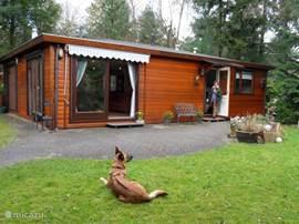 Ruim en gezellig chalet in een mooie tuin met veel privacy.