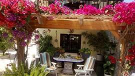 een heerlijke serre, met een dak van bloeiende bouganvilles/jasmijn, lekker ontbijten of lange avonden met een drankje.