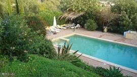 Het zwembad van  van af het huis gezien , met brede calsada(kleine portugese steentjes) rand en 12 ligbedden, vaste pergola en 2 grote parasols.'s Avonds is het bad te verlichten onder water .